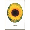 Dazzeling Sun Flower Wedding Invitation